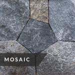 La Pietra Corithian Dark Collection Mosaic