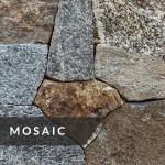La Pietra Dutch Blend Collection Mosaic