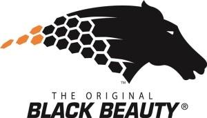 Black Beauty Abrasives